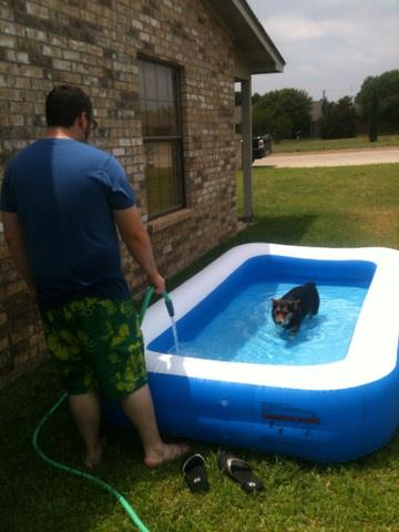 huxley pool